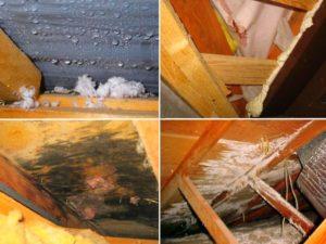 Необходимость проветривания крыши