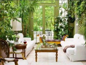 Роль комнатных растений в построении интерьера